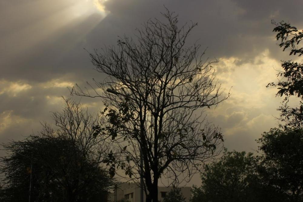 my photography 251